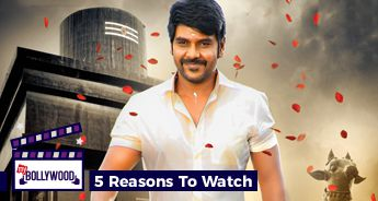 5 Reasons to Watch Sivalinga